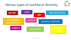 MGT 311 – Diversity in the Workforce