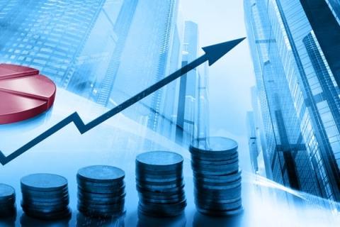ECO 225 – Corporate Finance