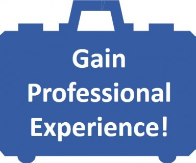 Gain Professional Experience Blue