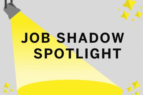 Yellow Gray White Spotlight Character Graphic Organizer