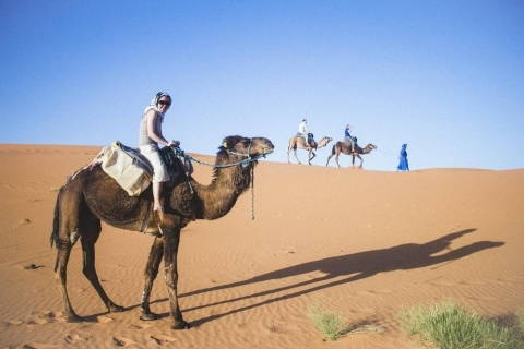 Traveler on camel