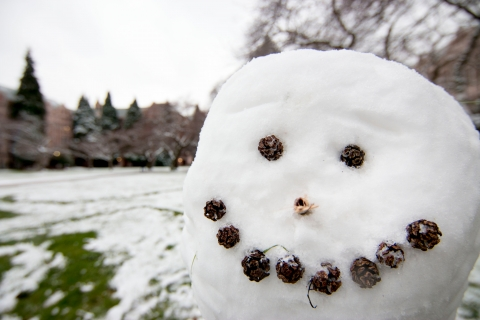 SnowyCampus_24 (1)