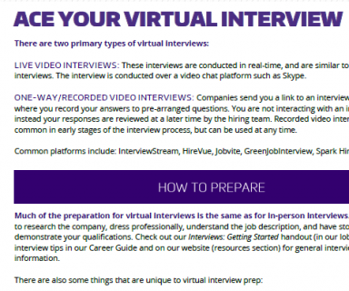 Ace Your Virtual Interview logo