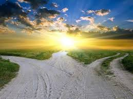 career path – multiple roads